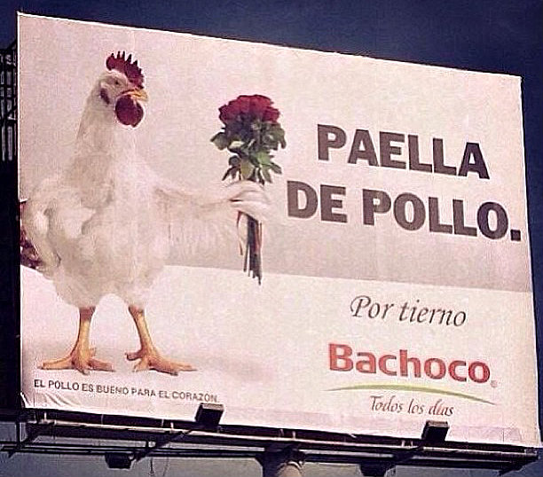 paellaPollo2