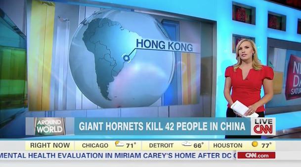 CNN_bigpic