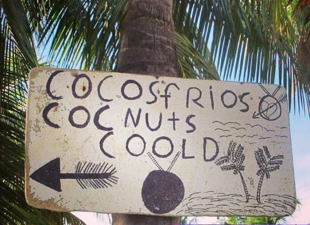 CooldCocNuts