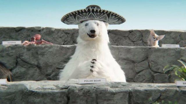 Polar1
